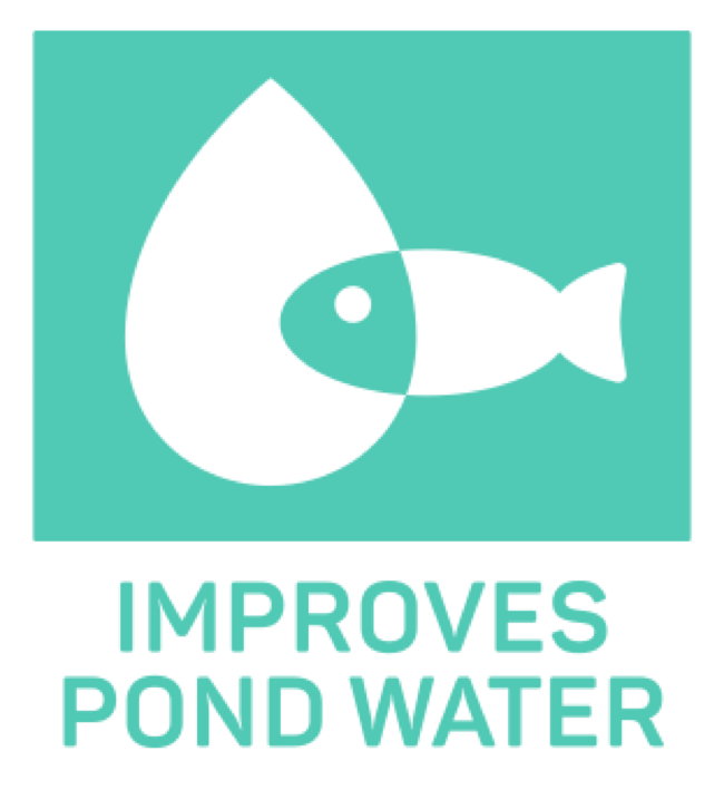 Pikto_improves_pond_water